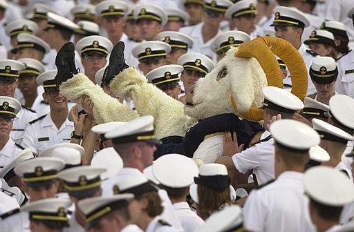 Navy mascot